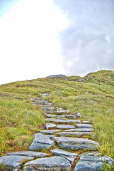 The Way.- (ancama_99(toni)) Tags: ireland vacation verde green way nikon camino country eire connemara campo vacaciones irlanda 1000views d60 10favs 10faves