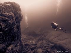 GOPR1370 (krakenfilms@yahoo.com.mx) Tags: mexico cabo underwater dive diving bajacalifornia scubadiving baja cabosanlucas buceo loscabos cursosdebuceo divecourses krakenfilms krakendivers buceorecreativo