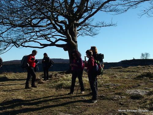 monte-santiago-senderismo-sermar-valladolid-ruta365 (30)