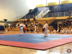 stefanou_15_5_2016_knockdown_70