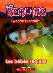 Les bébés requins (Vernon Barford School Library) Tags: new school fish animals french reading book shark high pups marine babies underwater library libraries reads books read paperback cover junior sharks covers bookcover pup middle infants vernon reproduction undersea français recent bookcovers languages nonfiction paperbacks foreignlanguages babyshark foreignlanguage barford lote sharkegg babysharks softcover marineanimals secondlanguage sharkpups sharkeggs sharkpup languagesotherthanenglish vernonbarford softcovers secondlanguages 9781443145534