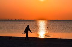 Sunset by the beach (Maria Eklind) Tags: ocean pink sunset sky orange reflection beach nature water silhouette strand se europe sweden outdoor horizon himmel sverige malm siluette solnedgng ribban ribersborg skneln horiston