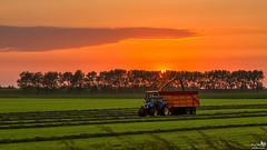 Harvesting during sunset (BraCom (Bram)) Tags: trees sunset cloud sun tractor holland netherlands grass canon evening zonsondergang bomen widescreen harvest nederland gras nl agriculture avond dijk 169 zon dike wolk zuidholland goereeoverflakkee trekker oogst landbouw southholland veevoeder dirksland canonef24105mm cattlefeed cattlebreeding veeteeld bracom canoneos5dmkiii bramvanbroekhoven