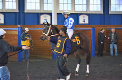 "2016-01-08 (14) r1 Jevian Toledo on #6 Sundaes Baby (JLeeFleenor) Tags: photos photography md marylandracing marylandhorseracing laurelpark sport sports paddock jockey جُوكِي ""赛马骑师"" jinete ""競馬騎手"" dżokej jocheu คนขี่ม้าแข่ง jóquei žokej kilparatsastaja rennreiter fantino ""경마 기수"" жокей jokey người horses thoroughbreds equine equestrian cheval cavalo cavallo cavall caballo pferd paard perd hevonen hest hestur cal kon konj beygir capall ceffyl cuddy yarraman faras alogo soos kuda uma pfeerd koin حصان кон 马 häst άλογο סוס घोड़ा 馬 koń лошадь bay maryland"