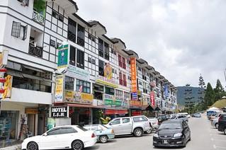 cameron highlands- malaisie 3