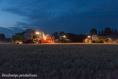 16072015-IMG_1704 (Deschamps productions) Tags: tractor night wheat harvest combine nuit harvester tracteur moisson bl fendt claas lexion batteuse cestari transbordeur moissonneuse