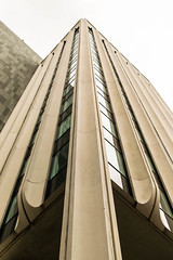 Bank Upwards (pillarsoflight) Tags: brown white building green glass beauty oregon 35mm portland prime aperture nikon pattern bank adobe pdx 18 pnw upward lightroom repeating d3300