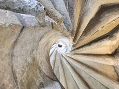 Doppelwendeltreppe in Graz (heinzstrobel1) Tags: stairs spirale wendeltreppe stiegen