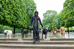 The Dog Walker (fwstephenson) Tags: dogwalker parisfrance