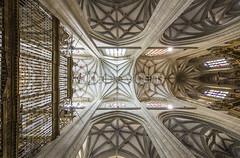 Catedral de Astorga (Gallo Quirico) Tags: architecture arquitectura olympus dome zuiko e5 astorga contrapicado gotico bvedas 714mm crucera