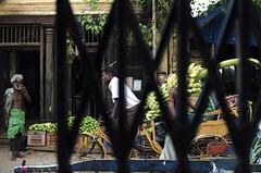 @ Parrys corner (Kals Pics) Tags: sowcarpet parrys chennai tamilnadu india life people streetlife cwc roi men woman pov perspective chennaiweelendclickers rootsofindia vehicle rickshaw singarachennai fruits market grill gate kalspics