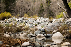 Intermittent and Calm (eugeniorojasarrivillaga_ph) Tags: mountain love sky monolith trail river creek stones rock solid autumn cold chile 7 cups tazas