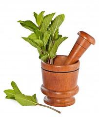 Nieznane właściwości znanych ziół (naturalnepiekno) Tags: bazylia mięta rumianek waleriana zioła