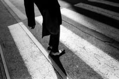(noah samuel mosko) Tags: street streetphotography moskophotography candid 35mm storytelling social study story stranger moment human noahsamuelmosko asa400 camera 400 unposed film self developed 2016 strangerthanfiction blackandwhite monochrome vehicle foma fomadon lqn bratislava bratislavans bratislavastreetphotography leica leicam leicam6 leicafilm fomapan400 fomapan elmarit elmarit28