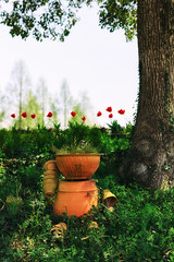 I found you... (lakeside_cat) Tags: flowerpot doll tree tulips   snap