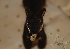 Needle felted dog: Beauceron 5 (~WelshStump~) Tags: dog dogs canine puppy needle felt felted felting fiber art arts soft sculpture replica breed purebred handmade ooak herd herding group fleece sheep wool border leicester shetland koolaid dyed dye natural beauceron beauce shepherd sheepdog french bergerdebeauce bas rouge cropped ears black rust tan