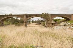 Old Disused Railway Bridge, Palmer, South Australia (Sharon Wills) Tags: murraylands murray south australia australian landscape trainbridge train rail bridge railway track reedycreek palmer westernboundaryroad disused old arched arches arch
