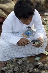 (a_almalki) Tags: doha qatar