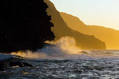 golden X (IanLudwig) Tags: canon photography hawaii kauai hawaiian beaches tog togs niksoftware hawaiiphotos vsco cep4 canon5dmkiii hawaiianphotography 5dmkiii canon5dmarkiii ianludwig canon70200mmf28lisusmii lightroom5 canon2xtciii adobephotoshopcc