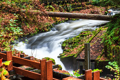 Grist Mill, Washington - 76 (www.bazpics.com) Tags: autumn trees orange usa motion color colour green fall mill nature colors beauty yellow america forest river landscape flow us washington moss rocks colours natural state wa grist barryoneilphotography