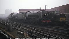 1968 - LNER Preserved.. (Robert Gadsdon) Tags: york geotagged steam 1968 preserved a4 a2 bittern peppercorn bluepeter gresley 60532 60019 eetype4 d375 geo:lat=5396184139063242 geo:lon=10974905089843787