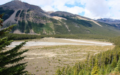 Jasper - Flood Plain (Sean Maynard) Tags: park canada mountains nationalpark scenery jasper alberta valley rockymountains athabascariver jaspernationalpark floodplain