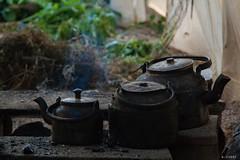 One-of-a-kind tea. Teapots heated over firewood. @greenhouse (A.Sigari) Tags: iran tea greenhouse teapots esfahan firewood falavarjan|