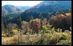 nEO_IMG__MG_6497 (c0466art) Tags: nov trip travel blue autumn trees light sky sunlight beautiful japan creek canon season landscape colorful natural bright many walk popular 2014 1dx c0466art