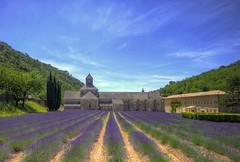 Abbaye Notre-Dame de Snanque (4000K views on my stream!) (Fil.ippo) Tags: france church abbey lavender provence gordes cistercian hdr filippo lavanda abbazia sigma1020 d7000 filippobianchi