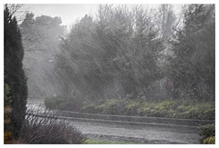 Latest picture for the Scottish Tourist  Industry! (theimagebusiness) Tags: road street winter sky wet water rain weather grey scotland lowlight wind pavement gale slippery sheeting scottishphotographers theimagebusiness