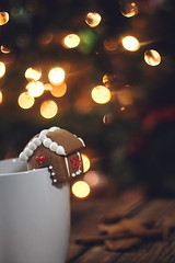 La Maison du Pain d'pices (Gabriela Tulian) Tags: thanksgiving christmas xmas winter food brown white house holiday hot home cup coffee cookies closeup festive dessert lights milk advent drink sweet shaped handmade chocolate traditional decoration gingerbread fresh celebration delicious biscuit homemade snack mug tradition peel cocoa shape cappuccino temptation decorated