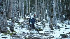 snow mountain (meiji4fun4life) Tags: sunset mountain snow nature forest hiking  f28  em1 1240