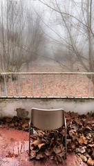 Mirando al vacio (Perurena) Tags: trees leaves fog landscape chair arboles paisaje ruina urbanexploration silla views vistas niebla balcn abandono urbex hojassecas sanatoriio