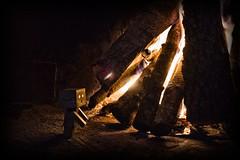 Danbo Fire (DECE') Tags: fire reallife danbo