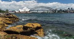 Sydney (NettyA) Tags: water landscape rocks view sydney australia nsw operahouse sydneyharbour sydneyharbourbridge mrsmacquarieschair sonya7r