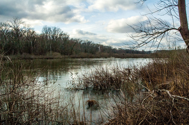 Wabash Lowlands Nature Preserve - January 6, 2015