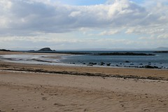 2016 - 3.5.16 North Berwick (55) (marie137) Tags: trees sea sky people sun fish beach dogs water weather architecture landscape movement sand collie rocks labrador play ben chips splash berwick murphy marie137
