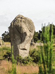 Le visage de carnac/the face of carnac (m-g-c photographie) Tags: old france nature strange face monster rock stone landscape roc photo brittany europe outdoor ngc bretagne breizh mgc curious rocher visage roche ancien alignment monstre carnac alignement trange menhir curieux exterieur alignementdecarnac