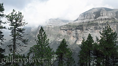 RF243448 (dklaproth) Tags: clouds outdoors photography landscapes woodlands quiet colorphotography nobody serenity canyons forests landforms naturalworld valleys overcastsky coniferousforests