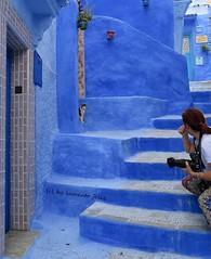 Chefchaouen. Marruecos (lameato feliz) Tags: color azul gato chefchaouen marruecos