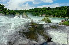 Rheinfall (welenna) Tags: switzerland summer schwitzerland sky swiss river rhein derrheinfall fluss forest vacation holiday water wasser