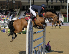 Up and over (Ann of Bere) Tags: show horse jumping royal windsor