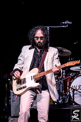 Mudcrutch (steve rose photos) Tags: concert concertphotography tompetty mudcrutch