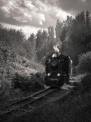 full steam II (Mris Pehlaks) Tags: autumn trees sky blackandwhite green nature clouds train pub outdoor railway latvia final ins aluksne banitis