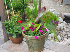 Pots and Pond (JP Newell) Tags: japanese iris pond pots planting stone canna lily