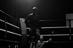 SUJET | Boxe. (2015) (Camille.r_photographer) Tags: red portrait blackandwhite france sport rouge gris photo model nikon noir photographie noiretblanc action interieur nb ring exposition lumiere blanc lemans couleur equipe quipe homme boxe reportage muaythai grosplan effet lumire arrt rassemblement pdv boxeur ozata ilumin d5100 camillerphotographer ariknordine punchlivefightnight zouhirabdeallah bouarfaomar ozatasamet quintongrgory bouteixjulien gregoryquinton