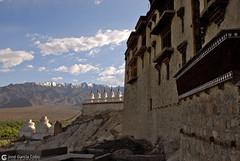 12-06-30 India-Ladakh (858) Shey R01 (Nikobo3) Tags: travel paisajes india architecture arquitectura nikon asia ngc viajes templos kashmir d200 leh monasterio himalayas jammu culturas twop shey karakorum nikond200 omot kachemira nikon247028 ladakd flickrtravelaward nikobo josgarcacobo palaciodeshey