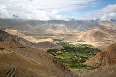 View of the Leh valley on the way to Khardung la (SaiKiranKanuri) Tags: lehtrip leh khardung la valley himalayas view fields irrigation green agriculture cultivation