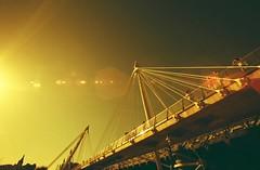 Hazy Days (Eva Palazzetti) Tags: canont90 redscale lomographyredscalexr redscalexr film wideangle widelens 35mm believeinfilm london embankment goldenjubileefootbridges thequeensgoldenjubileefootbridges bridge southbank