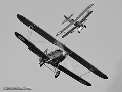 hawkers-1-1-1 (Stewart Taylor (SMT Photography)) Tags: blackandwhite heritage history photography flying blackwhite 1930s aircraft aviation air flight bedfordshire historic airshow nostalgia shuttleworth iconic hawker biplane biggleswade airdisplay shuttleworthcollection oldwarden flyingdisplay hawkerhind hawkerdemon theshuttleworthcollection hawkerbiplanes biggreentimemachine